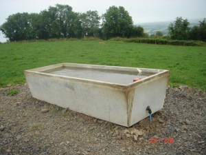 Drinking trough in situ